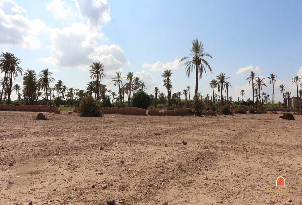 Palmeraie Building Land For Sale Marrakech - Marrakech Property - Marrakesh Realty - Marrakech Real Estate