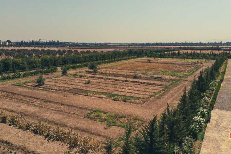 Land For Sale Marrakech SD1 Ourika Road - Marrakech Real Estate - Marrakesh Realty - terrain SD1 a vendre Marrakech - immobilier marrakech